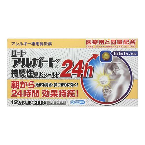アルガード 持続性鼻炎シールド24h