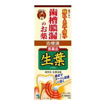 生葉液薬(ショウヨウエキグスリ) 20g (+綿棒30本)