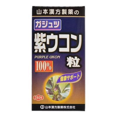 ガジュツ 紫ウコン粒 100% 280粒