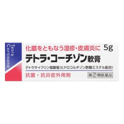 テトラ・コーチゾン軟膏 5g