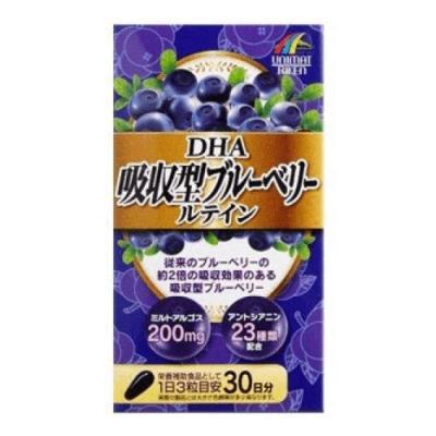 DHA吸収型ブルーベリールテイン 45g (500mg×90粒)