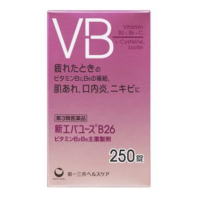 新エバユースB26